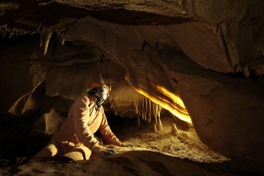 Grotta Doviza, particolare di concrezione a vela